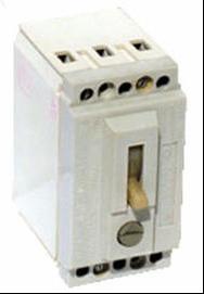 Выключатель автоматический ВА51-25
